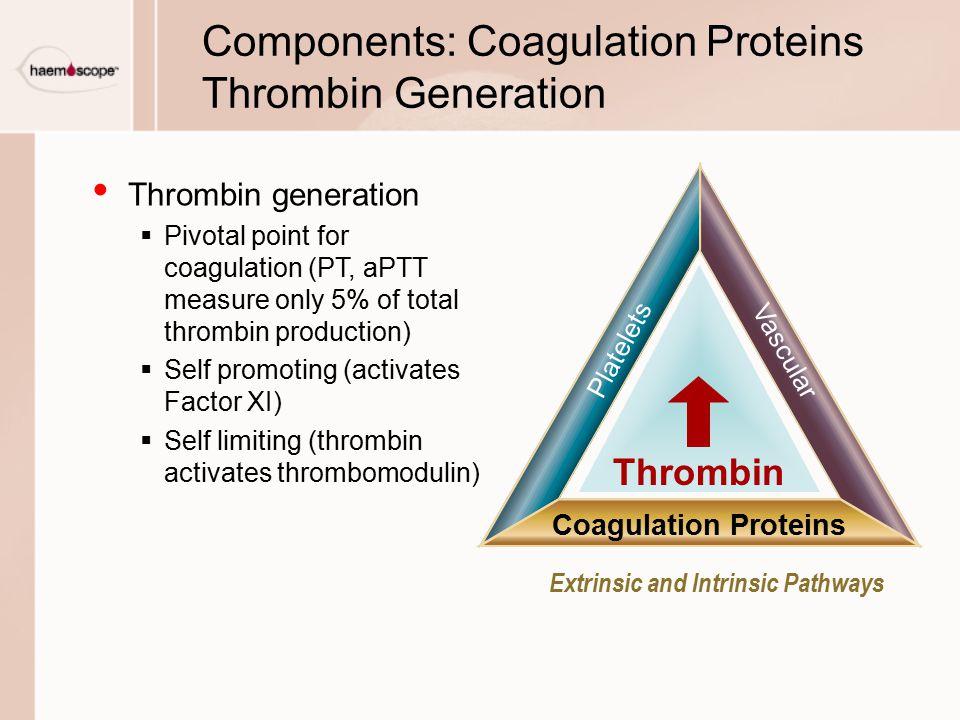 Components: Coagulation Proteins Thrombin Generation Thrombin generation  Pivotal point for coagulation (PT, aPTT measure only 5% of total thrombin p
