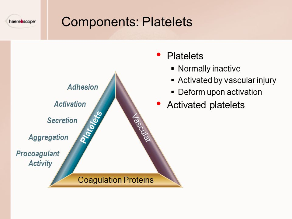 Components: Platelets Platelets  Normally inactive  Activated by vascular injury  Deform upon activation Activated platelets Adhesion Activation Se