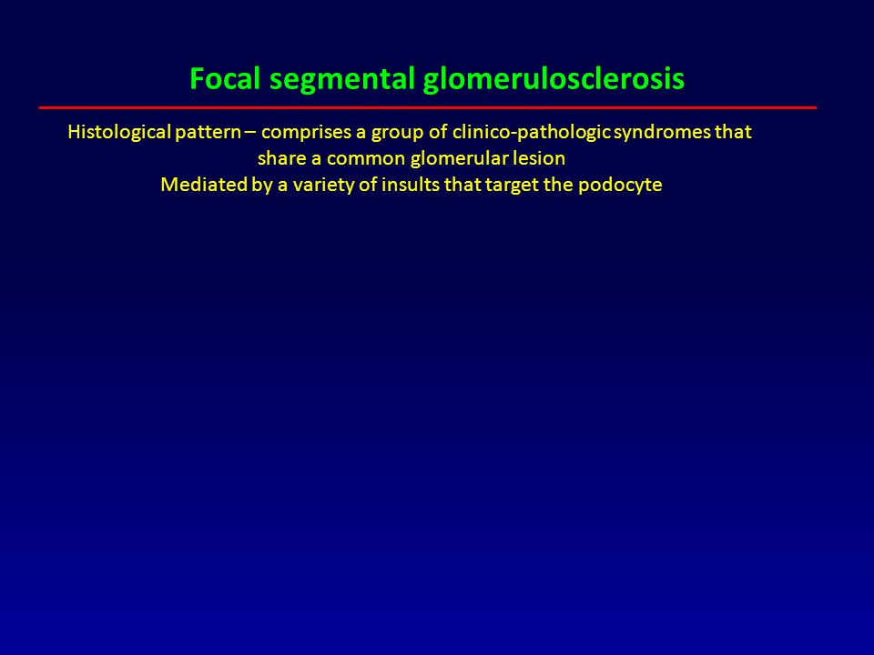 Focal segmental glomerulosclerosis Histological pattern – comprises a group of clinico-pathologic syndromes that share a common glomerular lesion Medi