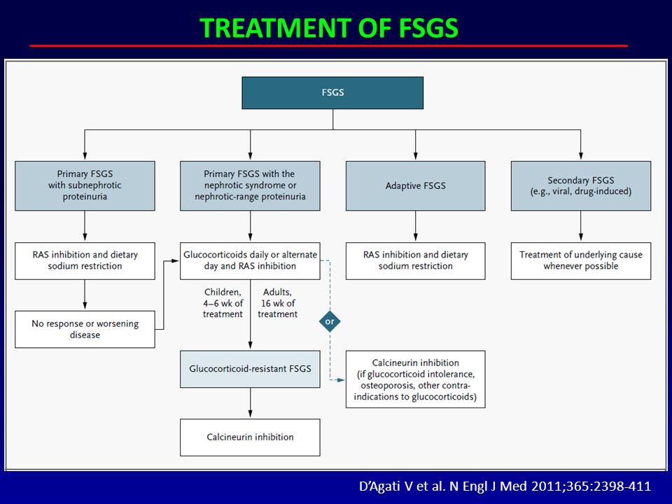 D'Agati V et al. N Engl J Med 2011;365:2398-411 TREATMENT OF FSGS
