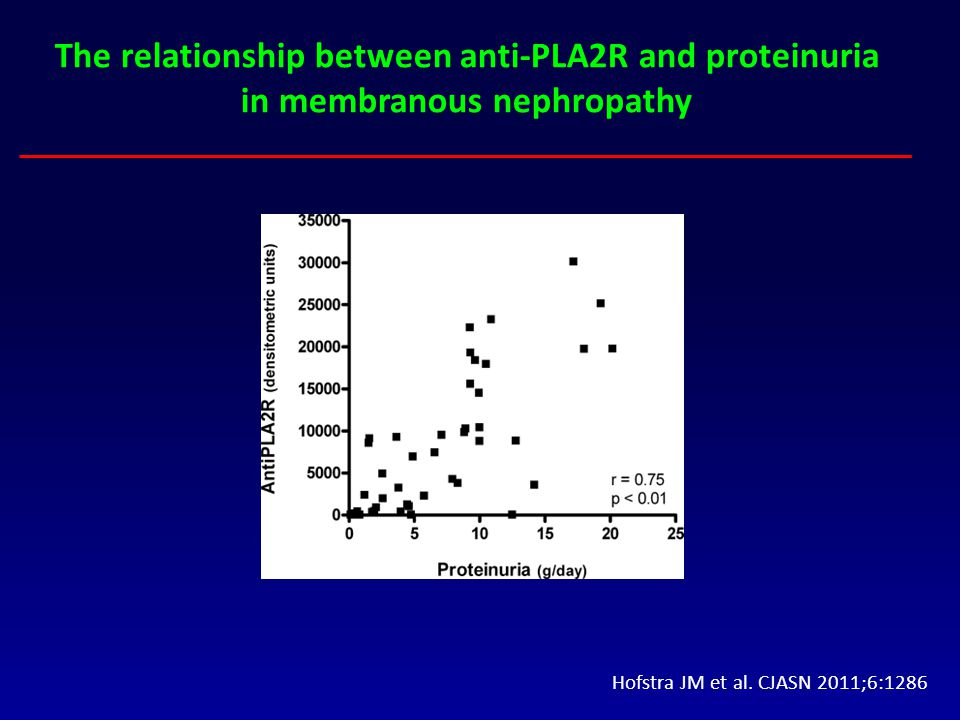 Hofstra JM et al. CJASN 2011;6:1286 The relationship between anti-PLA2R and proteinuria in membranous nephropathy