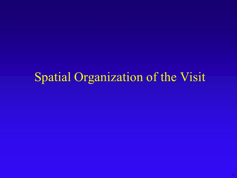 29 Spatial Organization of the Visit