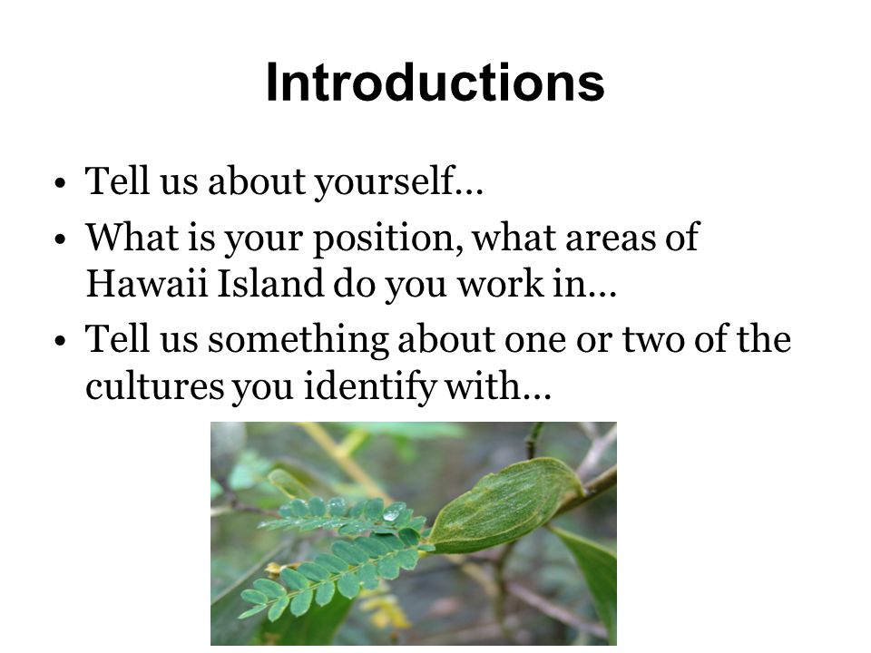 Introductions Tell us about yourself… What is your position, what areas of Hawaii Island do you work in… Tell us something about one or two of the cultures you identify with…