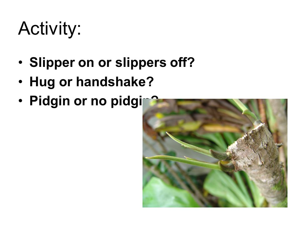 Activity: Slipper on or slippers off? Hug or handshake? Pidgin or no pidgin?