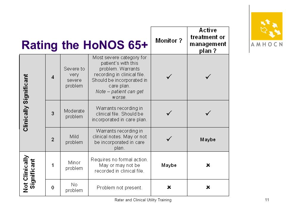 Rater and Clinical Utility Training11 Rating the HoNOS 65+