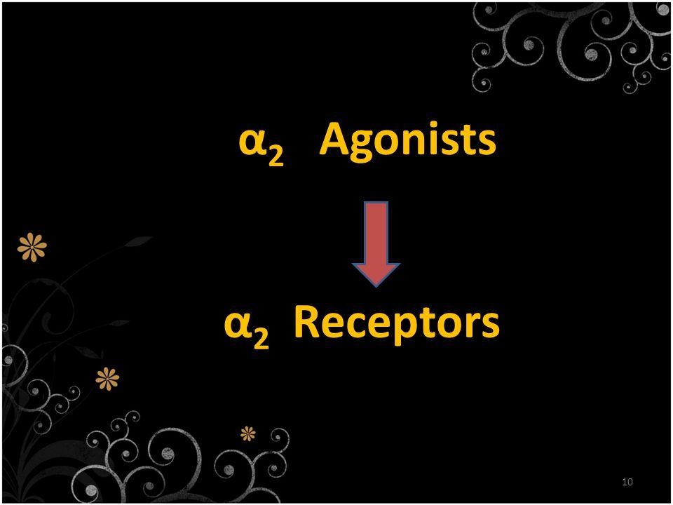 10 α 2 Agonists α 2 Receptors