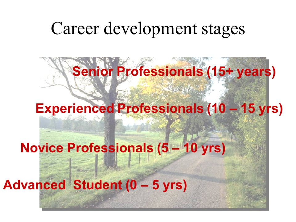 Career development stages Advanced Student (0 – 5 yrs) Novice Professionals (5 – 10 yrs) Experienced Professionals (10 – 15 yrs) Senior Professionals