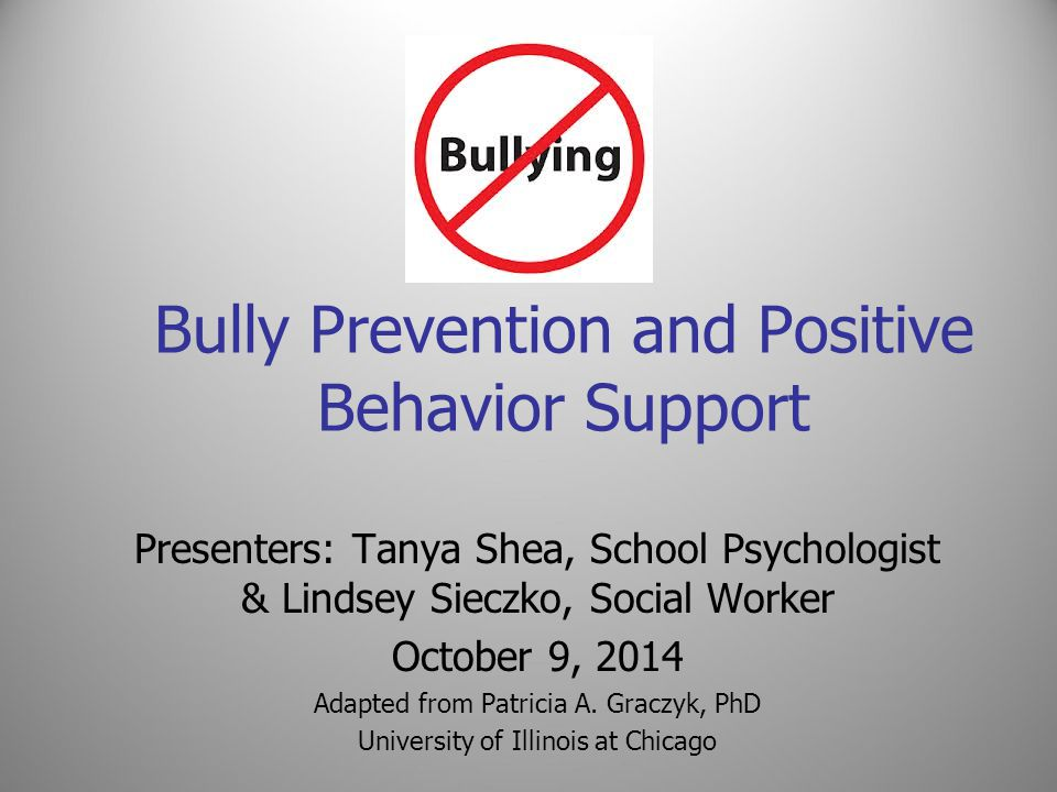 Bully Prevention and Positive Behavior Support Presenters: Tanya Shea, School Psychologist & Lindsey Sieczko, Social Worker October 9, 2014 Adapted fr