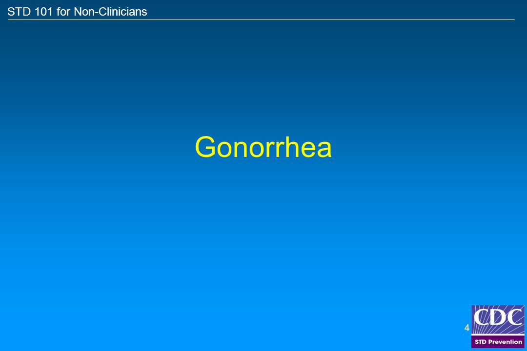 STD 101 for Non-Clinicians 3 Topics Gonorrhea Chlamydia Syphilis Herpes HPV – genital warts