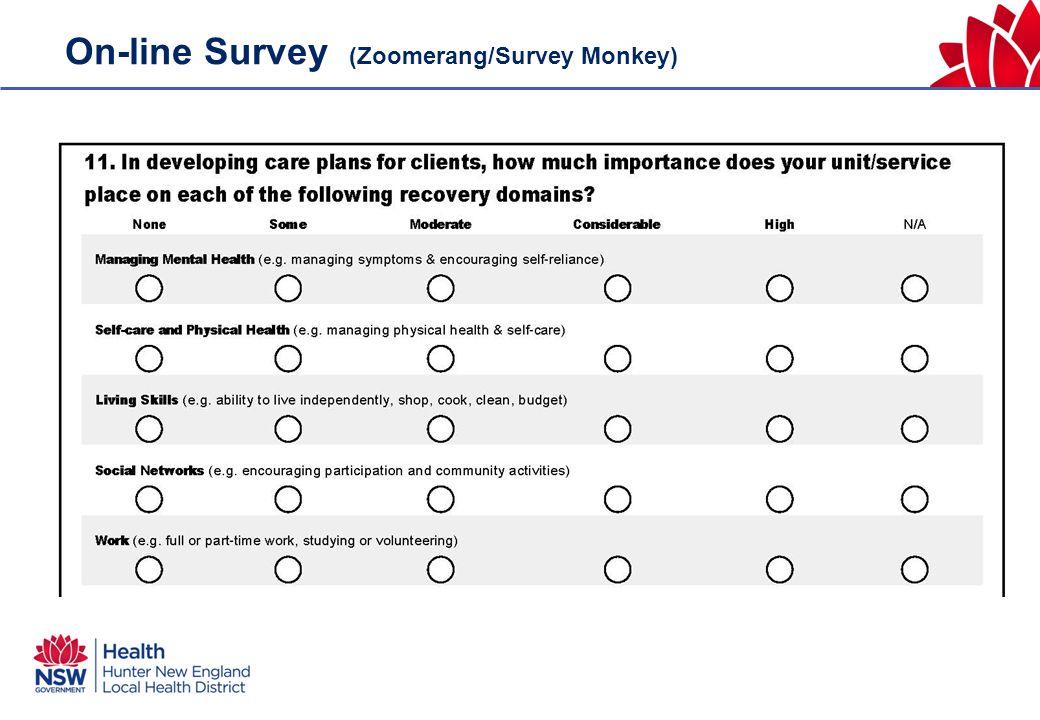 On-line Survey (Zoomerang/Survey Monkey)
