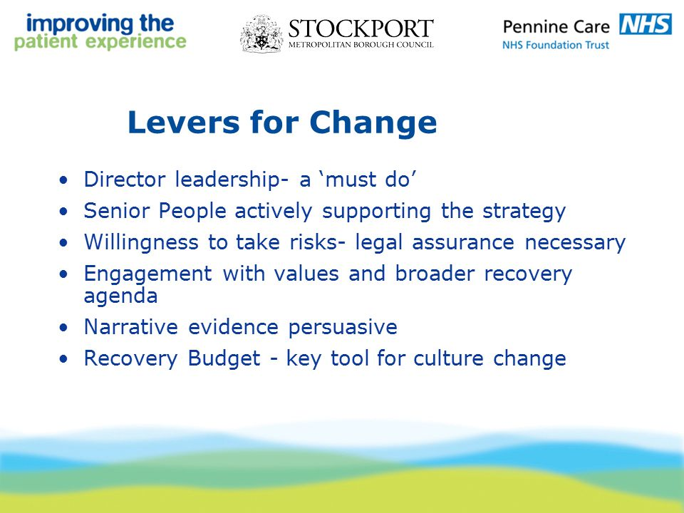 Levers for Change Director leadership- a 'must do' Senior People actively supporting the strategy Willingness to take risks- legal assurance necessary