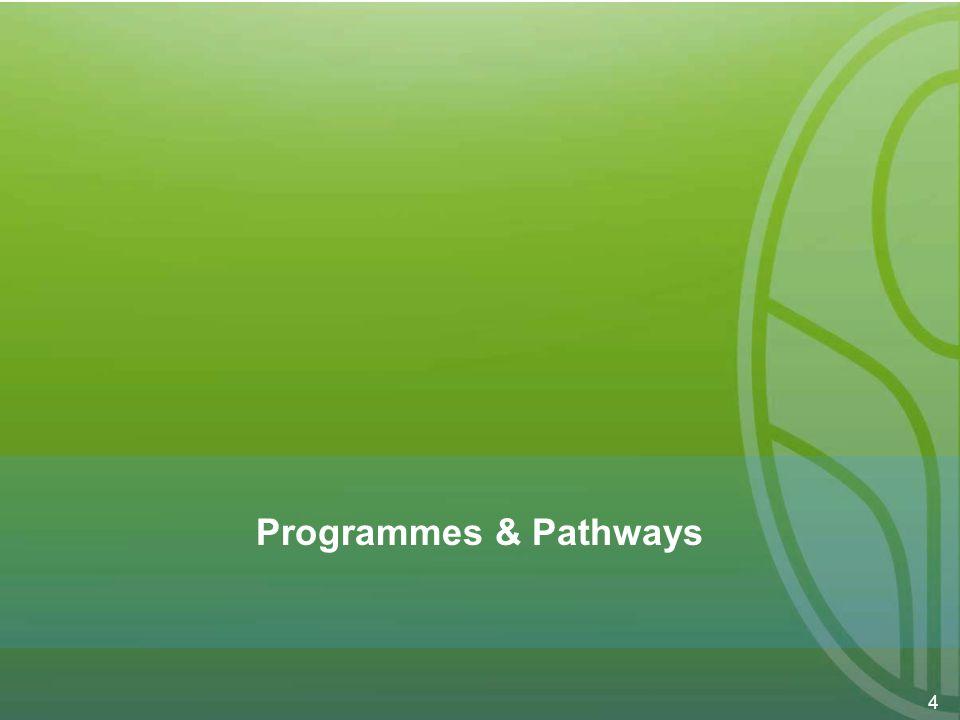 4 Programmes & Pathways