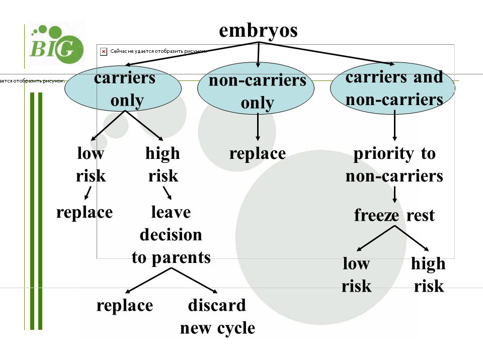 carriers only non-carriers only carriers and non-carriers replacelow risk high risk replaceleave decision to parents discard new cycle priority to non-carriers freeze rest low risk high risk replace embryos
