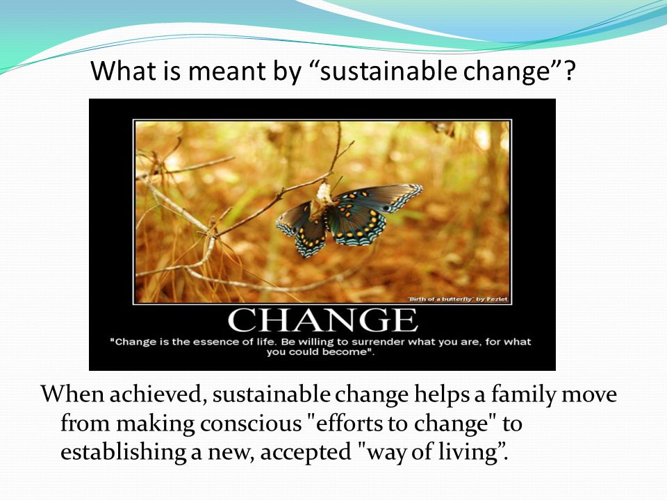 What is meant by sustainable change .