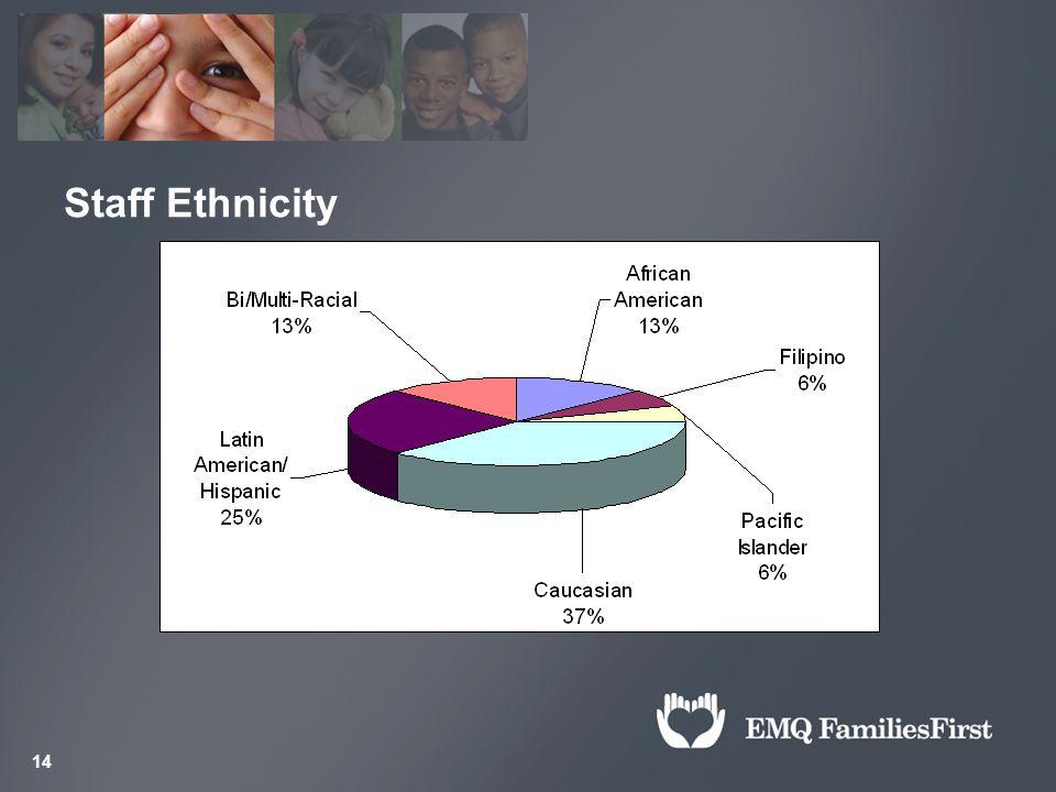 14 Staff Ethnicity