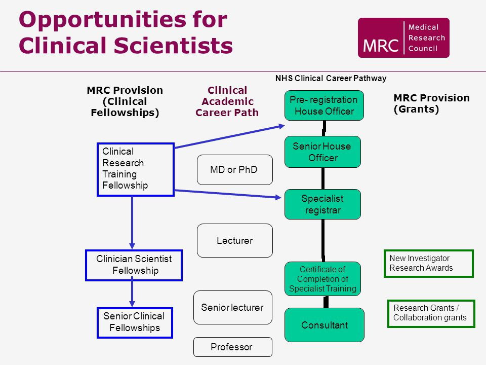 Opportunities for Clinical Scientists Pre- registration House Officer Senior House Officer Specialist registrar Certificate of Completion of Specialis