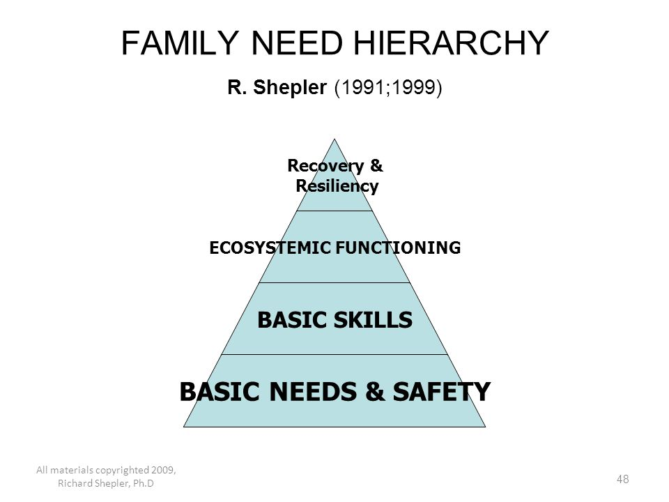 48 FAMILY NEED HIERARCHY R. Shepler (1991;1999) Recovery & Resiliency ECOSYSTEMIC FUNCTIONING BASIC SKILLS BASIC NEEDS & SAFETY All materials copyrigh
