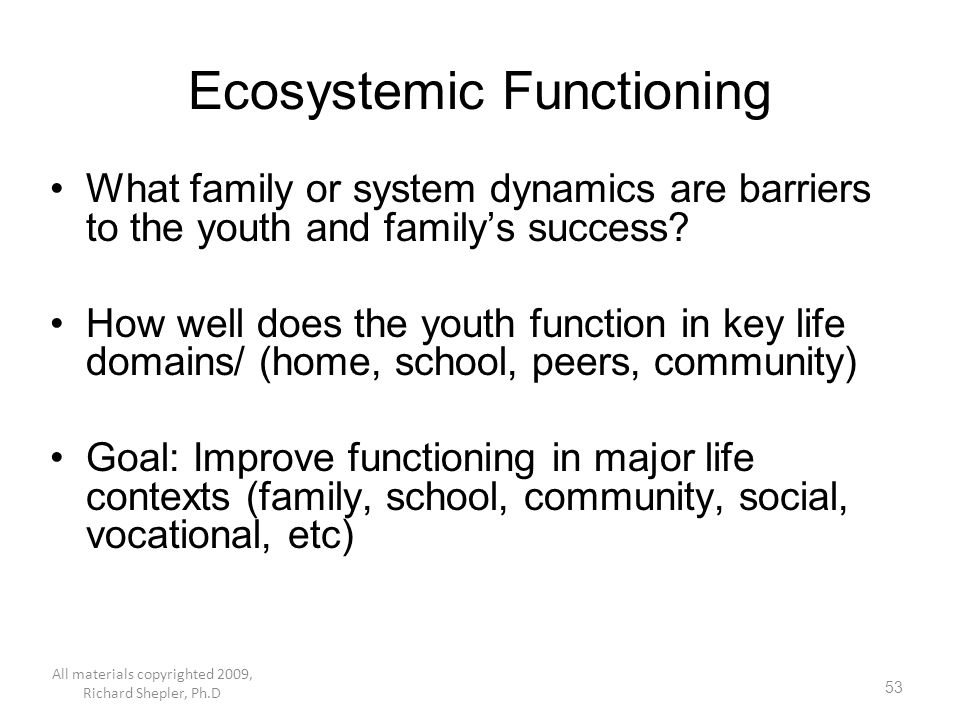 53 Ecosystemic Functioning What family or system dynamics are barriers to the youth and family's success? How well does the youth function in key life