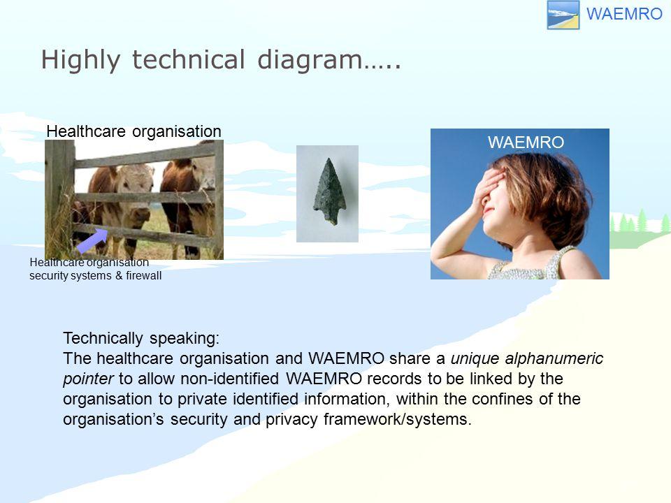 WAEMRO Highly technical diagram….. 12 WAEMRO Healthcare organisation security systems & firewall Healthcare organisation Technically speaking: The hea