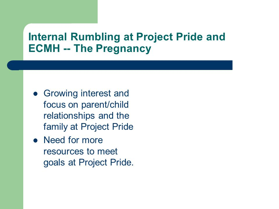 Internal Rumbling at Project Pride and ECMH -- The Pregnancy Growing interest and focus on parent/child relationships and the family at Project Pride
