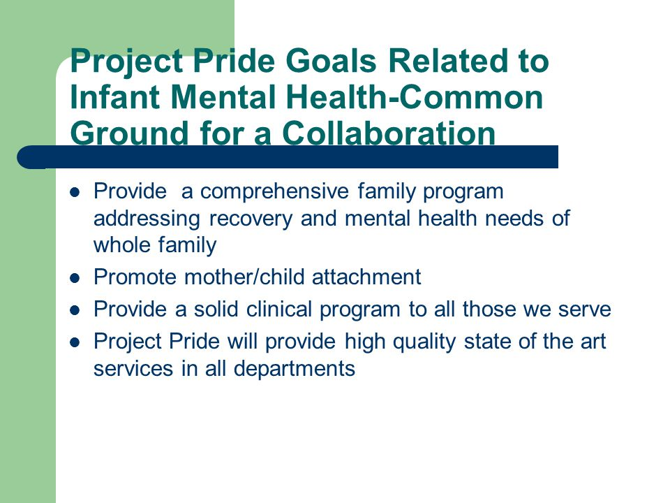 Project Pride Goals Related to Infant Mental Health-Common Ground for a Collaboration Provide a comprehensive family program addressing recovery and mental health needs of whole family Promote mother/child attachment Provide a solid clinical program to all those we serve Project Pride will provide high quality state of the art services in all departments