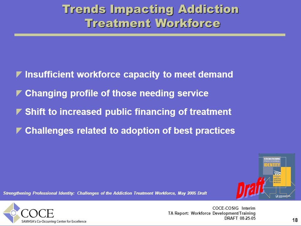 18 COCE-COSIG Interim TA Report: Workforce Development/Training DRAFT 08-25-05 Trends Impacting Addiction Treatment Workforce Insufficient workforce capacity to meet demand Changing profile of those needing service Shift to increased public financing of treatment Challenges related to adoption of best practices Strengthening Professional Identity: Challenges of the Addiction Treatment Workforce, May 2005 Draft