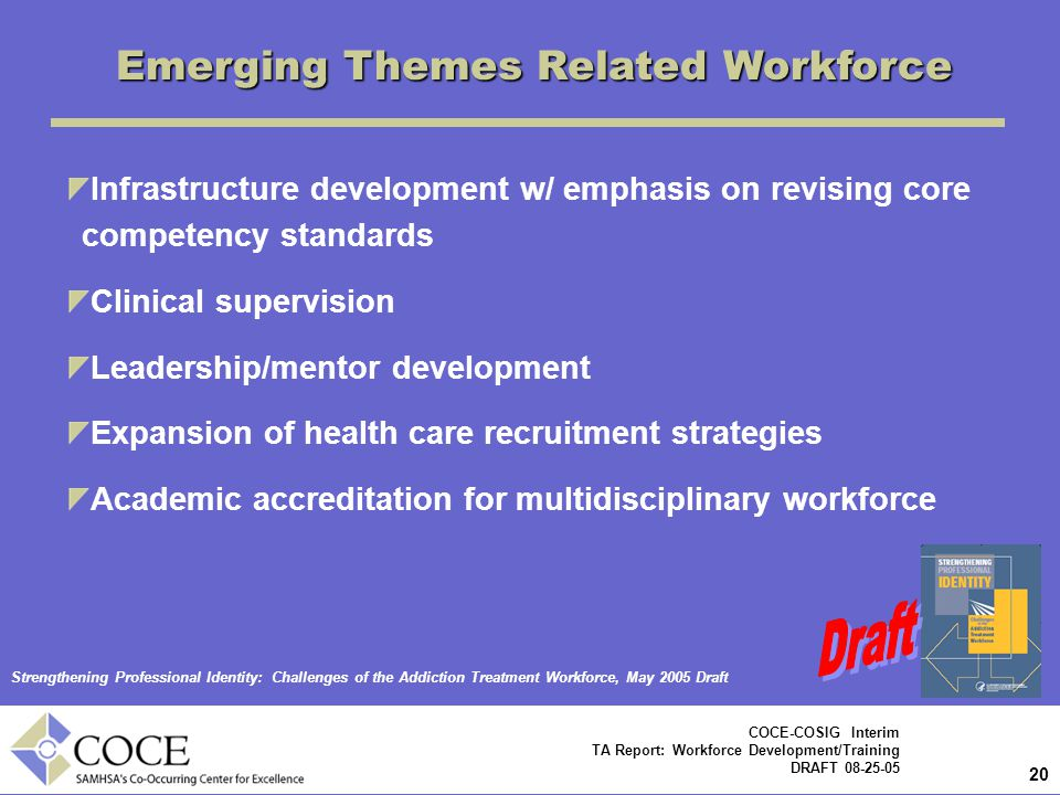 20 COCE-COSIG Interim TA Report: Workforce Development/Training DRAFT 08-25-05 Emerging Themes Related Workforce Infrastructure development w/ emphasis on revising core competency standards Clinical supervision Leadership/mentor development Expansion of health care recruitment strategies Academic accreditation for multidisciplinary workforce Strengthening Professional Identity: Challenges of the Addiction Treatment Workforce, May 2005 Draft