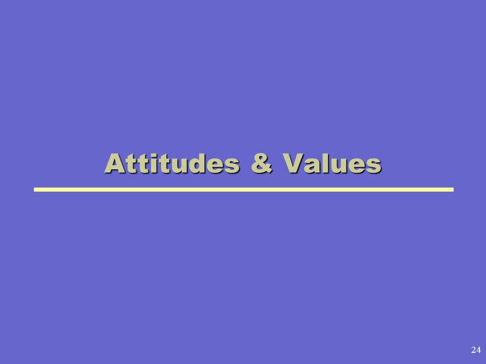 24 Attitudes & Values