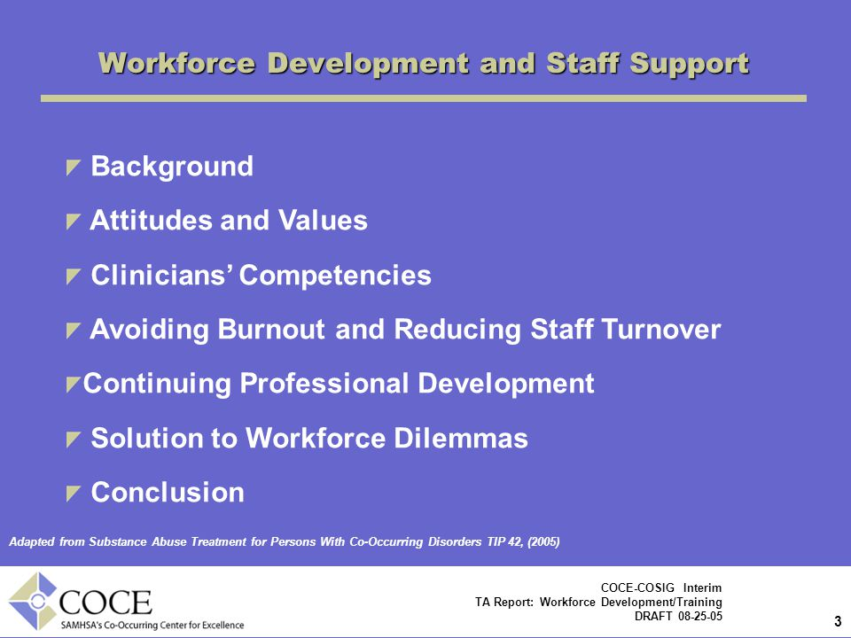 3 3 COCE-COSIG Interim TA Report: Workforce Development/Training DRAFT 08-25-05 Workforce Development and Staff Support Adapted from Substance Abuse Treatment for Persons With Co-Occurring Disorders TIP 42, (2005) Background Attitudes and Values Clinicians' Competencies Avoiding Burnout and Reducing Staff Turnover Continuing Professional Development Solution to Workforce Dilemmas Conclusion