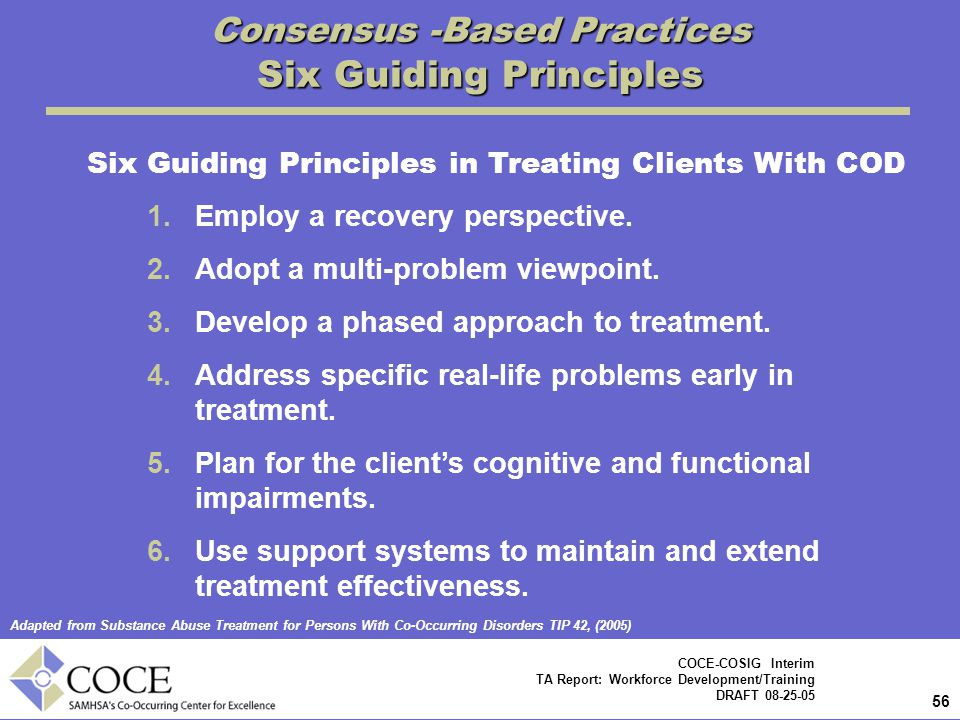 56 COCE-COSIG Interim TA Report: Workforce Development/Training DRAFT 08-25-05 Consensus -Based Practices Six Guiding Principles Six Guiding Principles in Treating Clients With COD 1.Employ a recovery perspective.