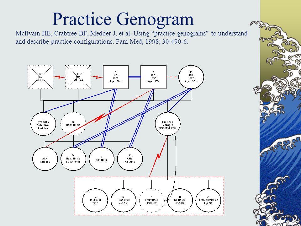 Practice Genogram McIlvain HE, Crabtree BF, Medder J, et al.