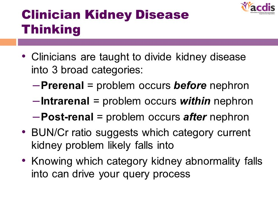 Clinician Kidney Disease Thinking Clinicians are taught to divide kidney disease into 3 broad categories: – Prerenal = problem occurs before nephron – Intrarenal = problem occurs within nephron – Post-renal = problem occurs after nephron BUN/Cr ratio suggests which category current kidney problem likely falls into Knowing which category kidney abnormality falls into can drive your query process