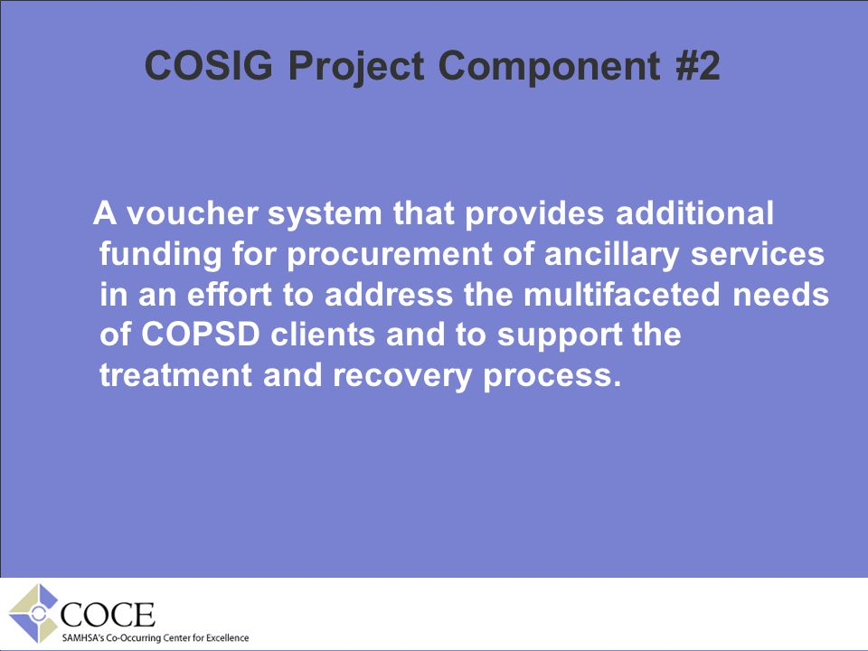 COSIG Project Component #2 A voucher system that provides additional funding for procurement of ancillary services in an effort to address the multifa