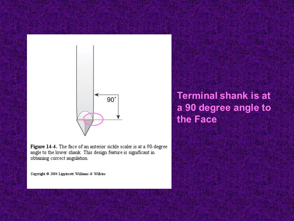 Terminal shank is at a 90 degree angle to the Face