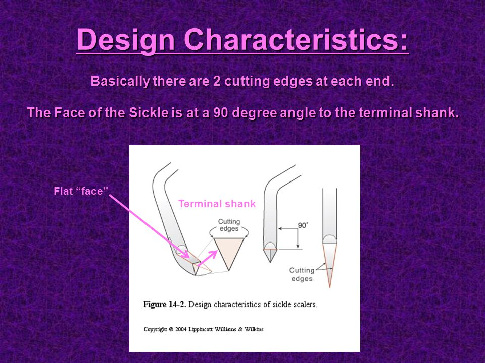 """Design Characteristics: Basically there are 2 cutting edges at each end. The Face of the Sickle is at a 90 degree angle to the terminal shank. Flat """"f"""