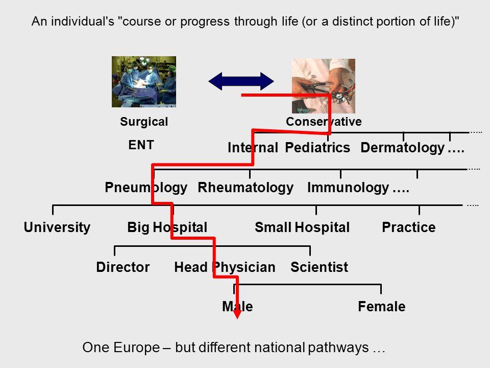 Internal Pediatrics Dermatology …. ….. Pneumology Rheumatology Immunology ….