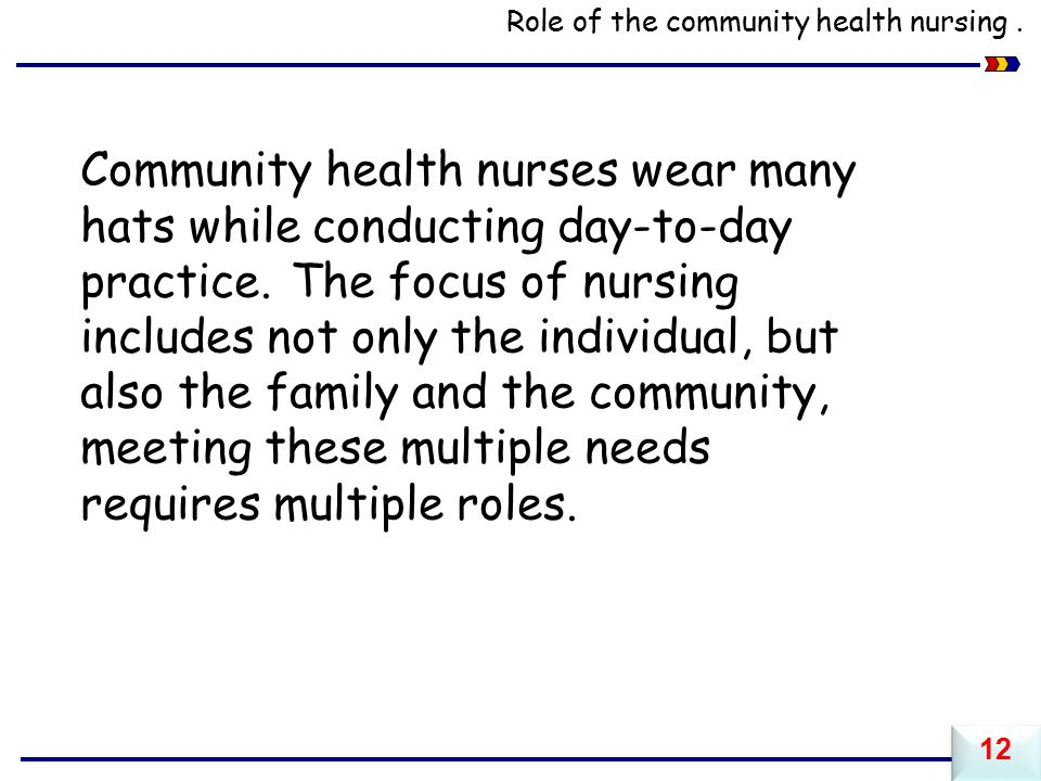 Role of the community health nursing.