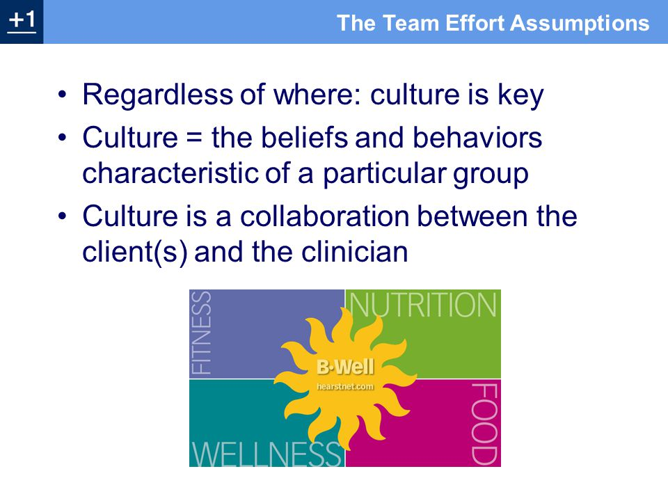 Regardless of where: culture is key Culture = the beliefs and behaviors characteristic of a particular group Culture is a collaboration between the client(s) and the clinician The Team Effort Assumptions
