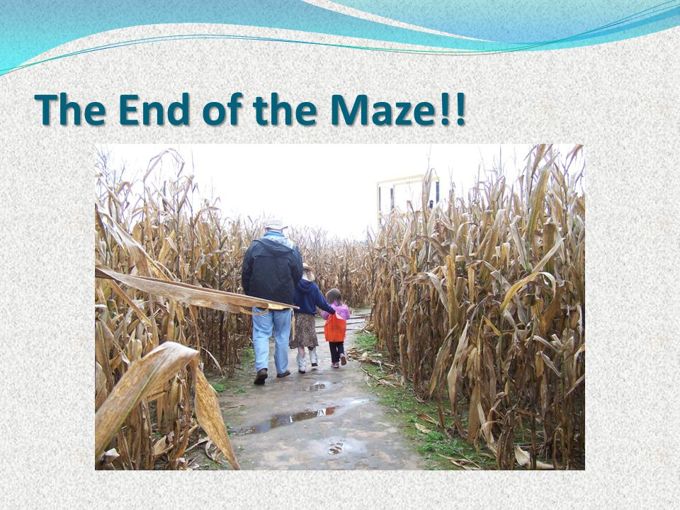 The End of the Maze!!