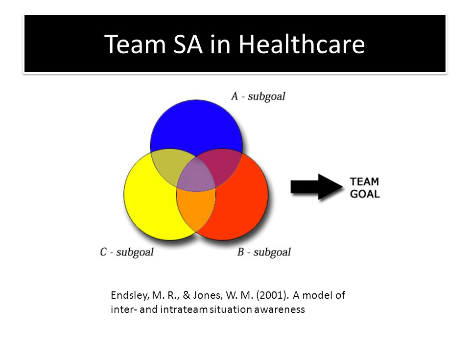 Team SA in Healthcare Endsley, M.R., & Jones, W. M.
