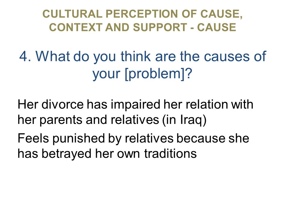 CULTURAL PERCEPTION OF CAUSE, CONTEXT AND SUPPORT - CAUSE 4.
