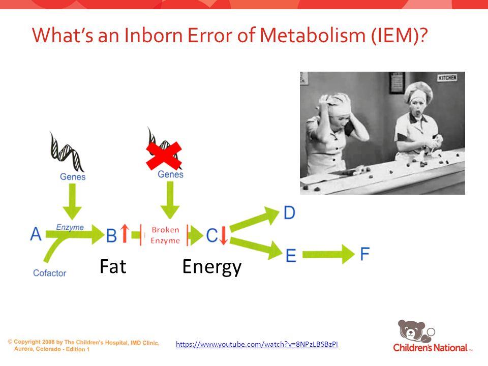 What's an Inborn Error of Metabolism (IEM)? 2 https://www.youtube.com/watch?v=8NPzLBSBzPI FatEnergy