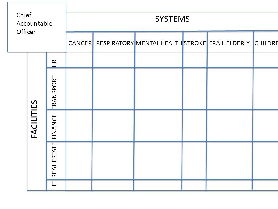 SYSTEMS FACILITIES CANCER RESPIRATORY MENTAL HEALTH STROKE FRAIL ELDERLY CHILDREN IT REAL ESTATE FINANCE TRANSPORT HR F F Chief Accountable Officer