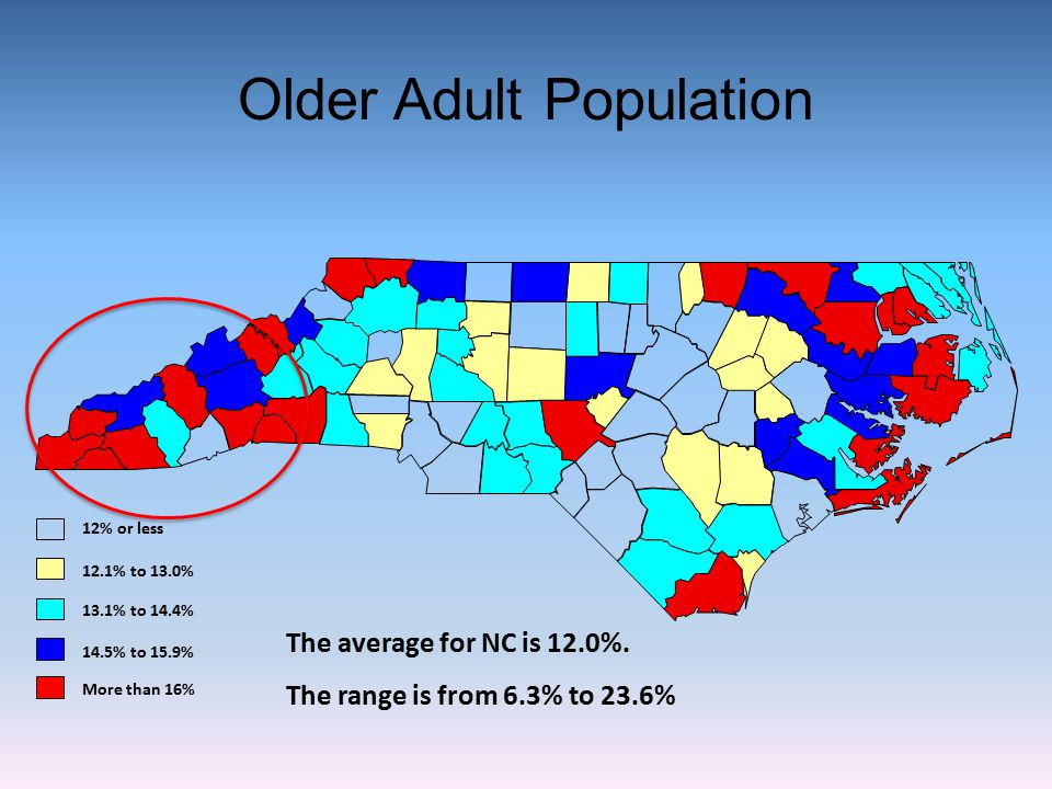 Older Adult Population
