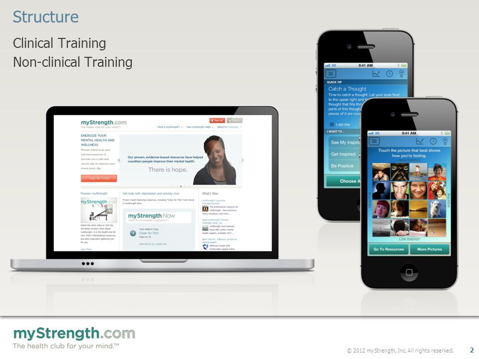 © 2012 myStrength, Inc. All rights reserved. 2 Clinical Training Non-clinical Training Structure