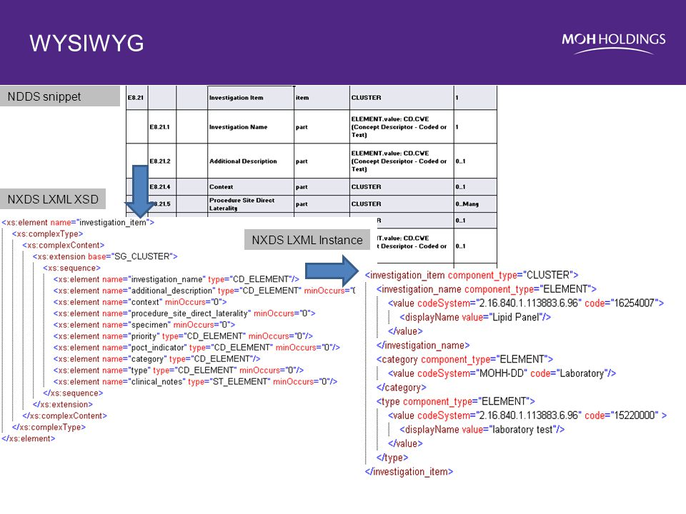 WYSIWYG NDDS snippet NXDS LXML XSD NXDS LXML Instance