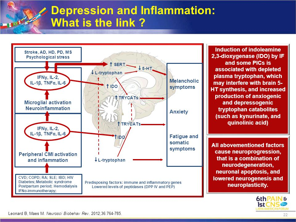 Depression and Inflammation: What is the link .