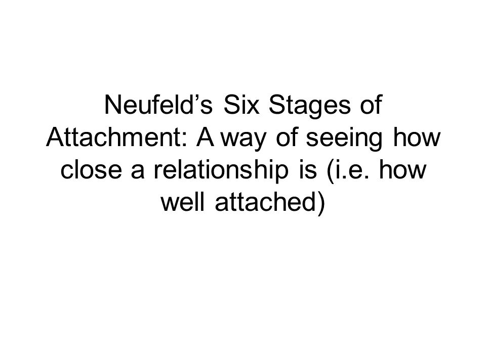 Neufeld's Six Stages of Attachment: A way of seeing how close a relationship is (i.e. how well attached)