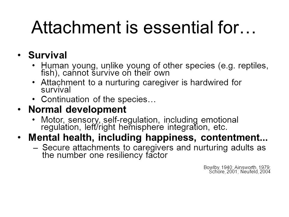 Attachment is essential for… Survival Human young, unlike young of other species (e.g.