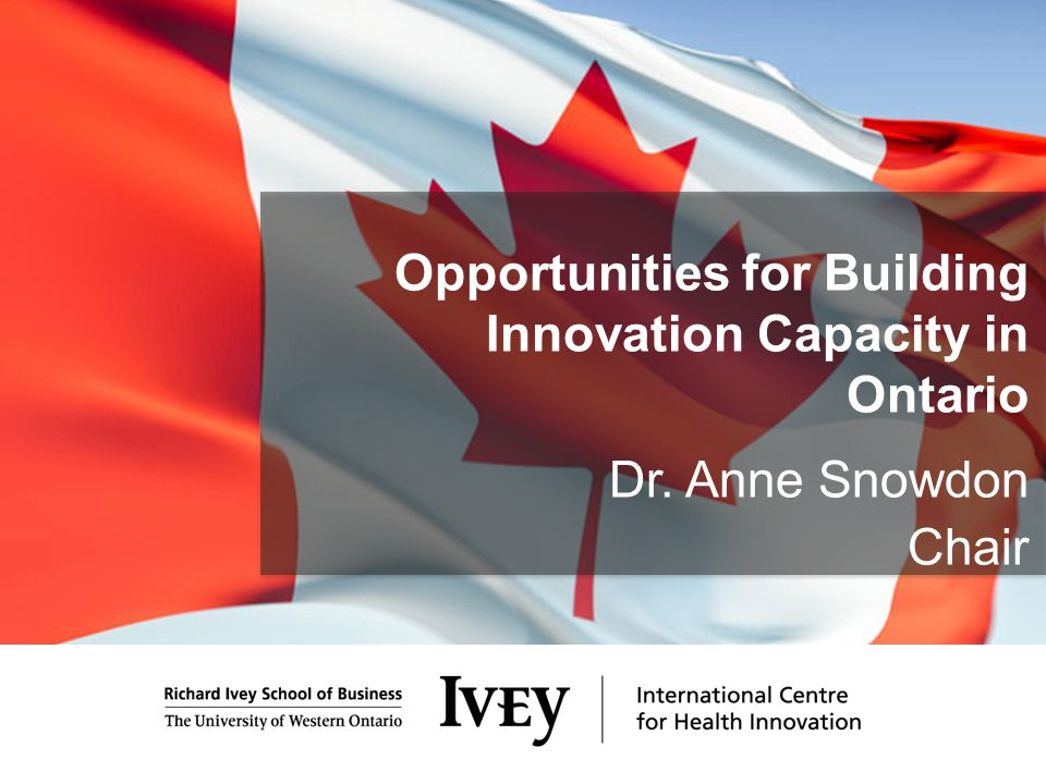 Opportunities for Building Innovation Capacity in Ontario Dr. Anne Snowdon Chair